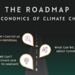 The Economics of Climate Change