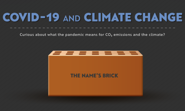 COVID-19 and Climate Change: The name's 'Brick'